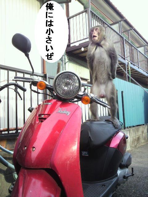 Nagisanobaiku
